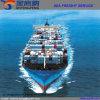 O frete de mar relativo à promoção o mais novo/frete do transporte/remetente de frete a Noruega