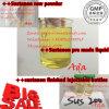 Injection de finition personnalisée Sustanon 250mg 400mg de Brew pour la vente en gros