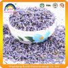 중국 건강 약초차 라벤더 차