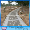 Concrete poco costoso Water Permeable Brick Paving per Driveway, patio, giardino