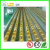 좋은 가격 방수 IP65 5050 SMD LED 장식적인 빛