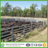 China Supply 6 Rail Portable Livestock Cattle Panels