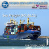 국제적인 Freight Forwarder 또는 Port Elizabeth에 Shipping Agent From