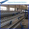 Моторы 01 Downhole фабрики изготовленные