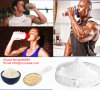 Het eiwit Poeder van de Weiproteïne van de Transferrine van de Voeding van het Poeder Menselijke Natuurlijke