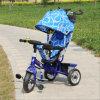Baby-Spaziergänger-Fahrrad-Dreirad zerteilt Rad des Dreirad3