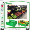 Cremalheira de indicador excelente da fruta e verdura do supermercado da qualidade