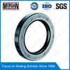 Intere guarnizioni rotative dell'asta cilindrica di serie PTFE/NBR/FKM/Fabric