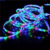 Outdoor Christmas Strip Lights를 위한 SMD 5050 LED Flexible Strip