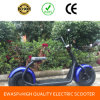 18*9.5 Ewasp Citycocoの販売のための電気スクーター1000W Harleyの小型大人の電気小型チョッパーのオートバイ