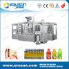 Automatische Hete het Vullen van het Sap van de Fles van het Huisdier 300ml Machine