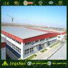 Estructura Edificio Lingshan Steel en Australia (LS-041)