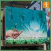 Большой съемный стикер стены улицы PVC (TJ-014)