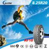 Hochleistungs-LKW-Reifen, Bus-Reifen Radial, TBR Reifen (8.25R20)