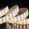 Color flexible de la tira 120LEDs del LED que cambia la tira de 5050SMD 12VDC LED