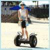 Rad-Selbstschwerpunkt-persönliche Transportvorrichtungelektrischer Unicycle des Großverkauf-2015 neuen der Produkt-zwei