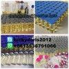 Liquide de finition injectable Supertest450 de pétrole pour le culturisme