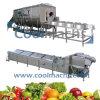 Branqueador para vegetais e linha de processamento equipamento de Shimp