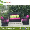 庭の家具のテラスの柳細工の庭のソファー(G-05A)