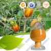 FDA chemische Formel-Nahrungsmittelfarbtongardenia-Gelb-Auszug