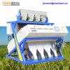 Vsee 5000 + камера пиксела Rice Цвет сортировщик Philipino