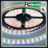 Outside Decorations를 위한 높은 Performance SMD 5630 LED Strip
