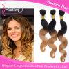 Выдвижение человеческих волос Remy Weave волос Ombre 2 тонов бразильское (HBWB-ZT052)