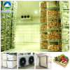 Fresh Vegetableのための冷蔵室
