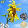 Фосфатидилхолин семян подсолнуха 100% естественный