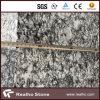 Azulejos baratos chinos del azulejo del granito de Seawave
