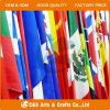 Kundenspezifische Feiertags-Markierungsfahne, Staatsflagge