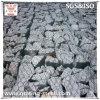 PVC Coated/Galvanized/Gabion Mesh/Baskets para Sale