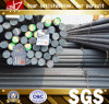 Steel Caldo-laminato GB/JIS Round Bars 10mm