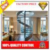 Seguridad curvada de la escalera del acero inoxidable