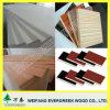 Projeto da madeira compensada para a decoração e a construção