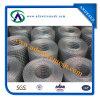 Rete metallica saldata forte qualità (Galvanized/PVC ricoperti)