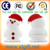 Pupazzo di neve meraviglioso Christmas Gift ed USB Flash Drive