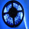 Striscia blu di colore LED