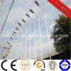 luz de rua solar DC12V/DC24V de 15W 5m