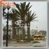 Comercio al por mayor la decoración del jardín artificial de fibra de vidrio Fecha de hojas de palmera