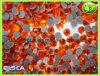 Rhinestones quentes do reparo da qualidade do AAA (EH001)