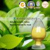 Het natuurlijke Poeder van het Pigment van Gardenia Gele voor de Rang van het Voedsel