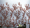 Hintergrund-Mosaik-Wand-Fliese-Mosaik-Muster-Fliese (HMP655)
