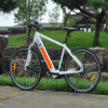 A melhor bicicleta elétrica de MTB com bateria escondida (RSEB-304)