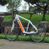 2017 bicicleta elétrica nova do projeto MTB (RSEB-304)