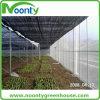 Chambre commerciale d'ombrage pour la serre chaude préfabriquée agricole de champignon de couche