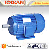 Wechselstrom 220V dreiphasig für industrielle Maschinen-Elektromotoren