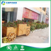 나무로 되는 Flower Wheelbarrow 또는 Planter (FY-015B)