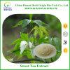 甘い茶Rubusosideの甘い茶葉のエキス、甘い茶エキス