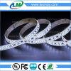 Indicatore luminoso di striscia blu-chiaro flessibile di illuminazione LED dell'indicatore luminoso SMD3014 LED del LED